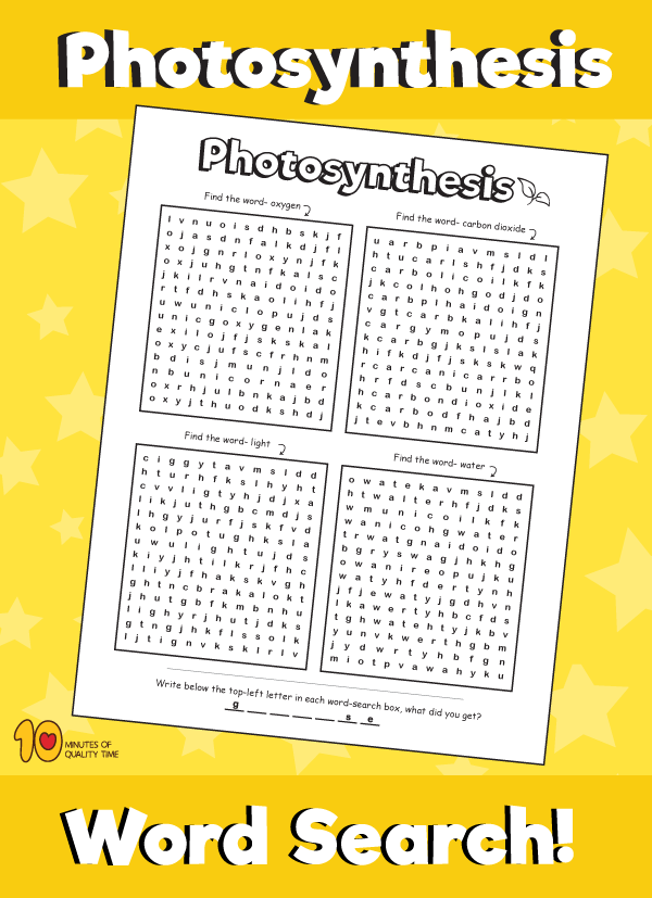 Photosynthesis Word Search (With images