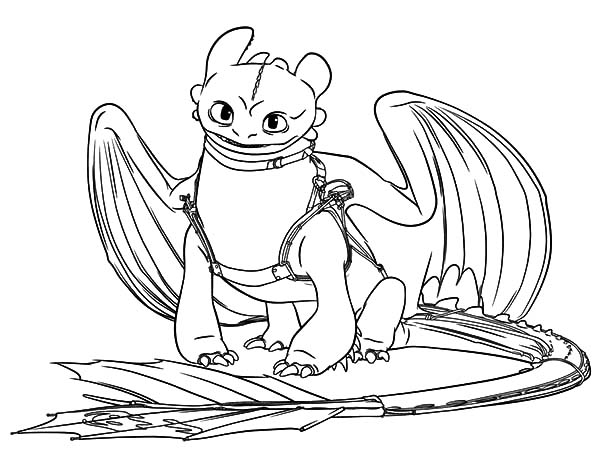 Night Fury Ready For Adventure In How To Train Your Dragon Coloring Pages Coloring Sky Dragon Coloring Page How Train Your Dragon Coloring Pages