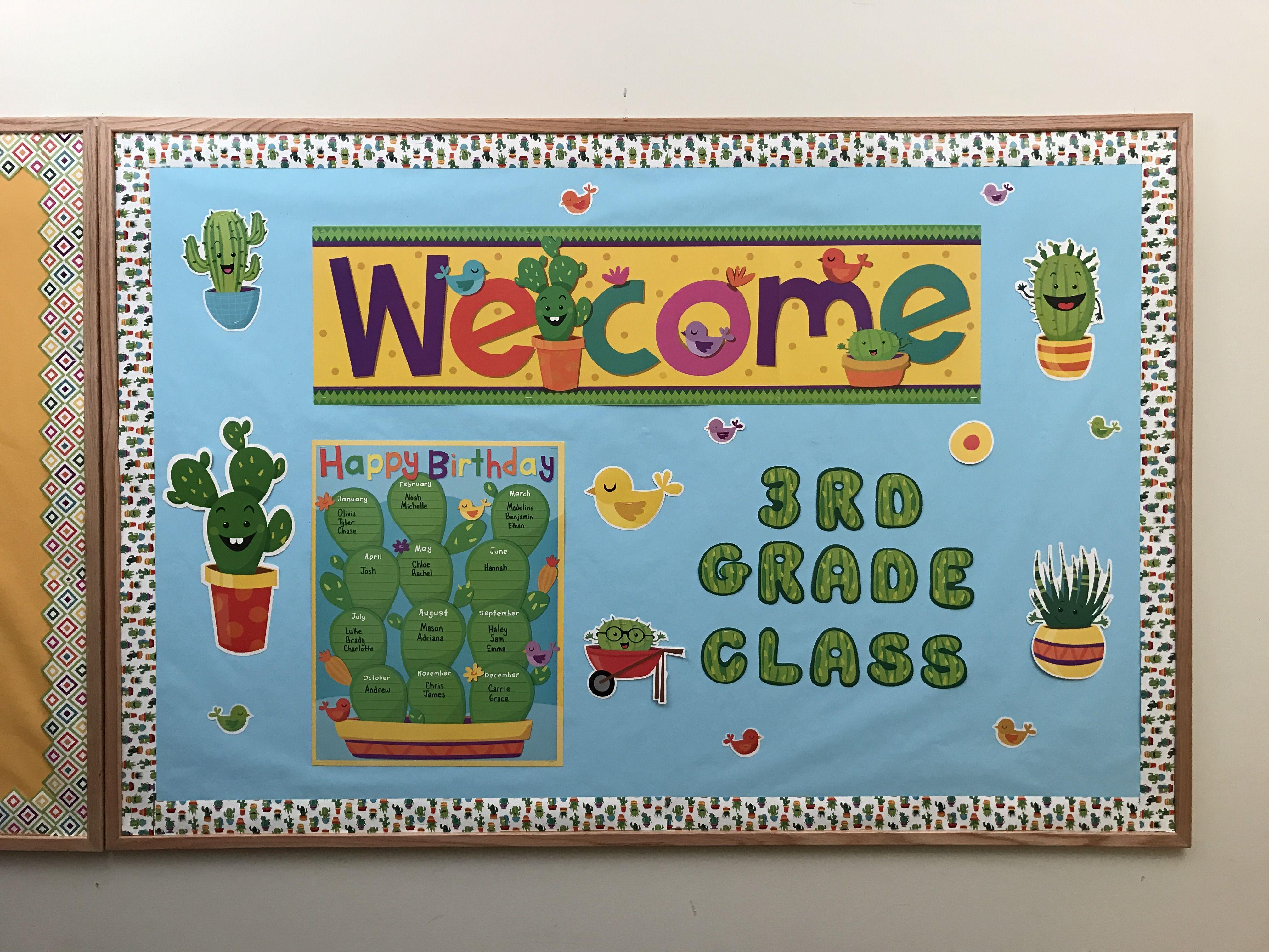 A Sharp Bunch Cactus Classroom decoration and bulletin board idea