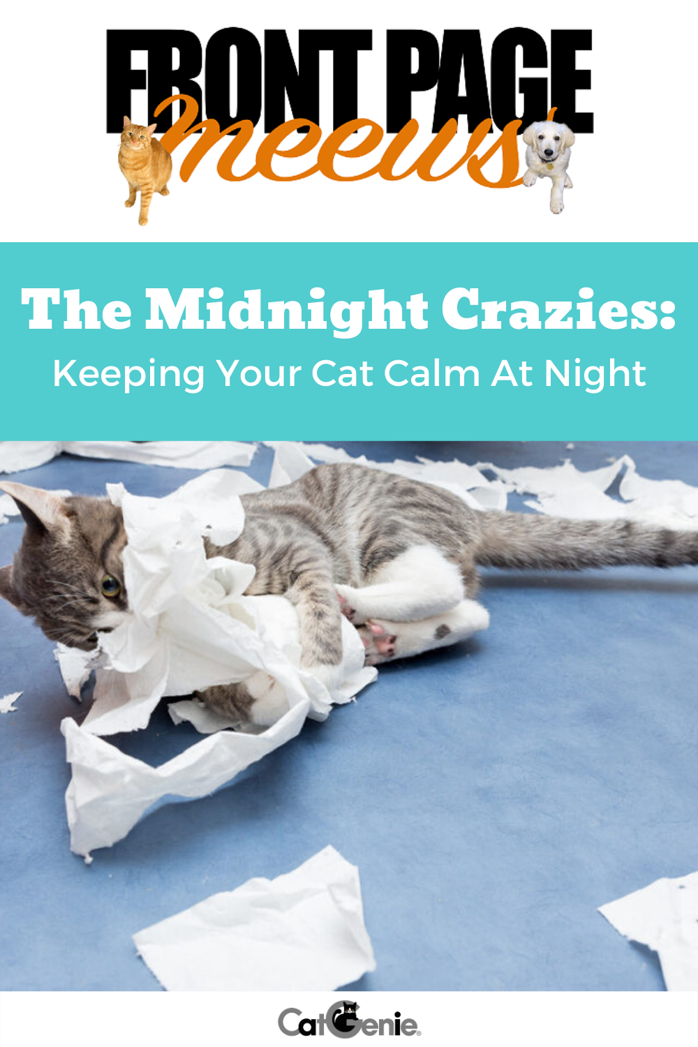 Getting To Sleep Is Hard Enough These Days But What Is The Cutest Thing That Could Possibly Keep You Awake All Night O Cat Behavior Cats Cat Sleeping