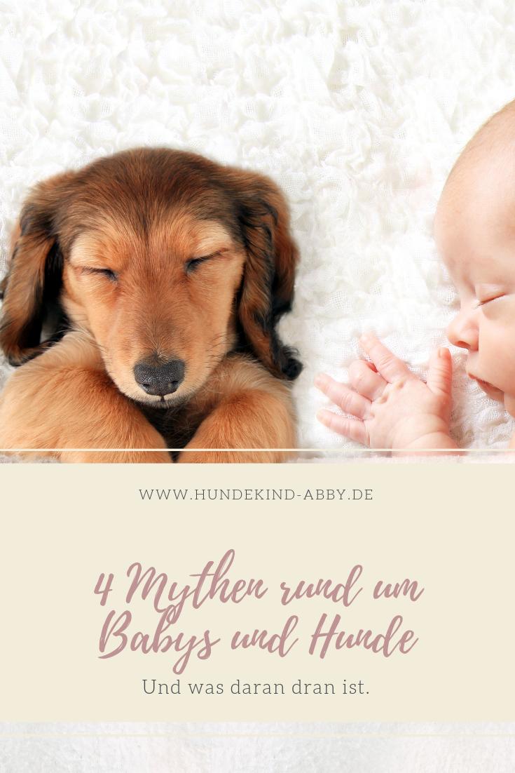 Babysorgen Hundesorgen Mit Bildern Hunde Hunde Und Kinder Hundehaltung