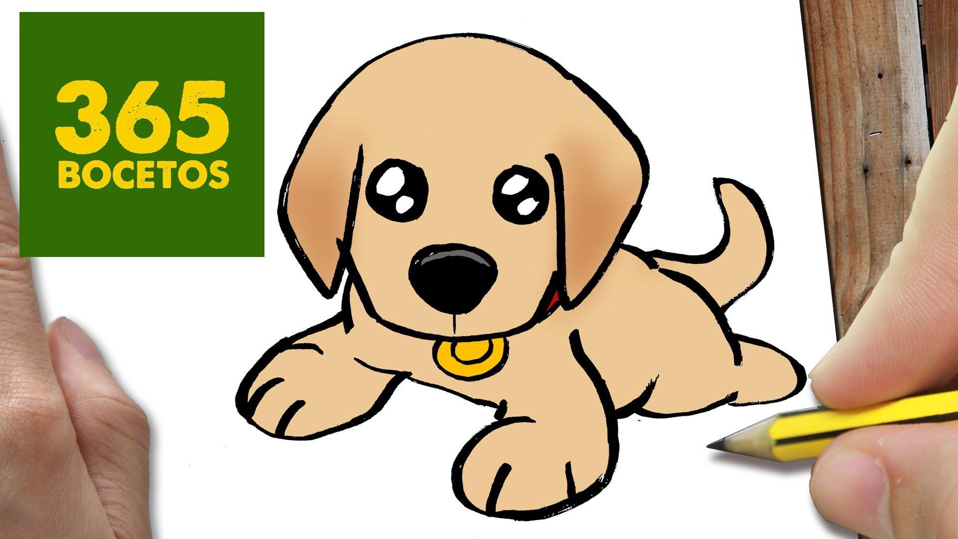 Como Dibujar Un Perro Labrador Paso A Paso Os Enseñamos A Dibujar