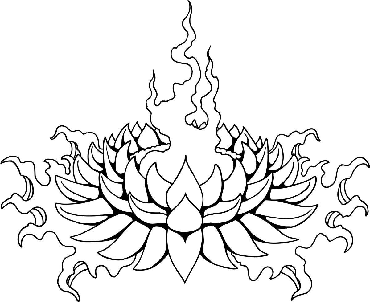 Lotus Flower Tattoo Designs Tattoo Ideas Pinterest Flower