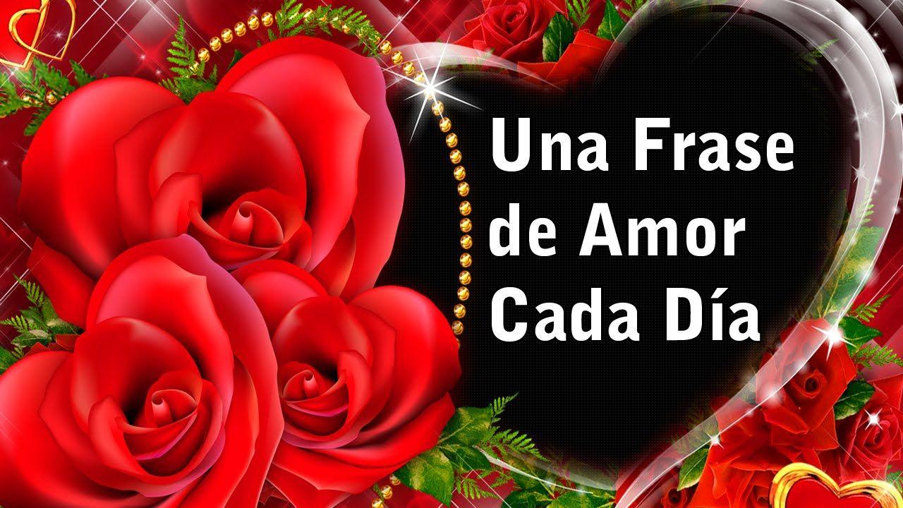 Rosas de Amor con Frases para Enamorar Una Frase de Amor cada da