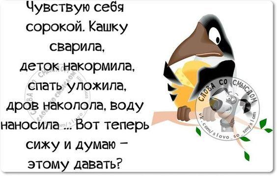 Картинки с юмором: прикольные надписи и фразы   Смешные ...
