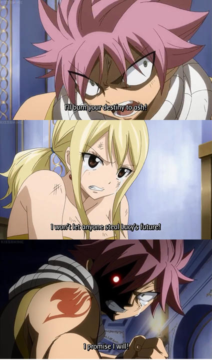 Fairy Tail Natsu X Lucy I Will Protect Lucy S Future