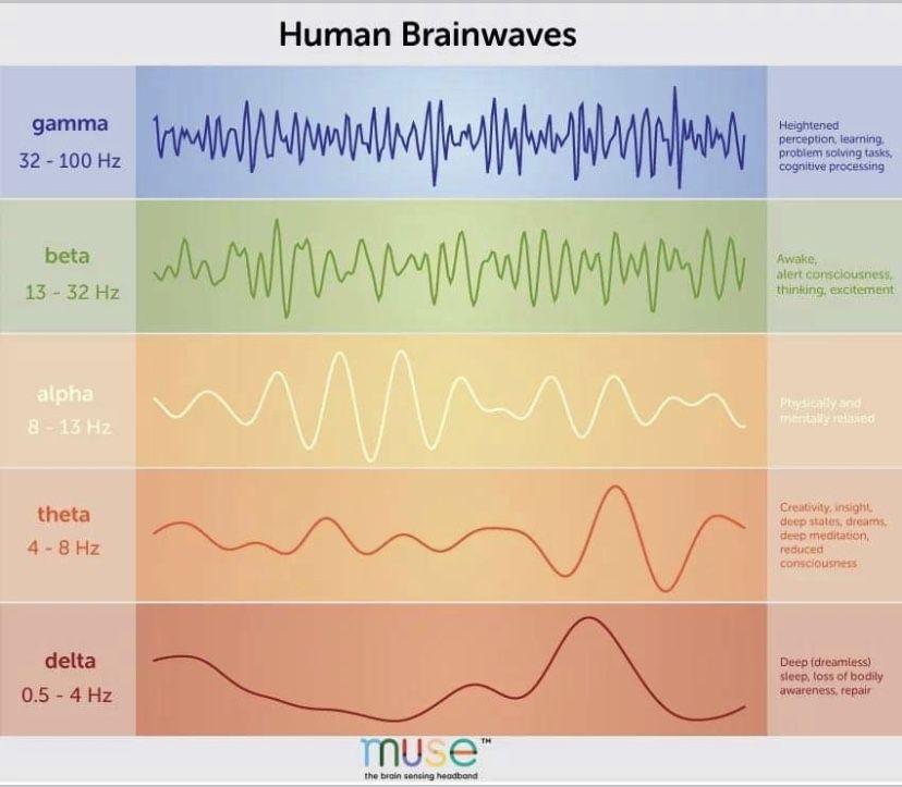 Pin by Francesca D'Elia on Spirit Brain waves