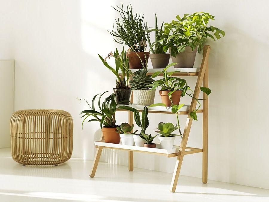 Resultado de imagen de mueble para cactus