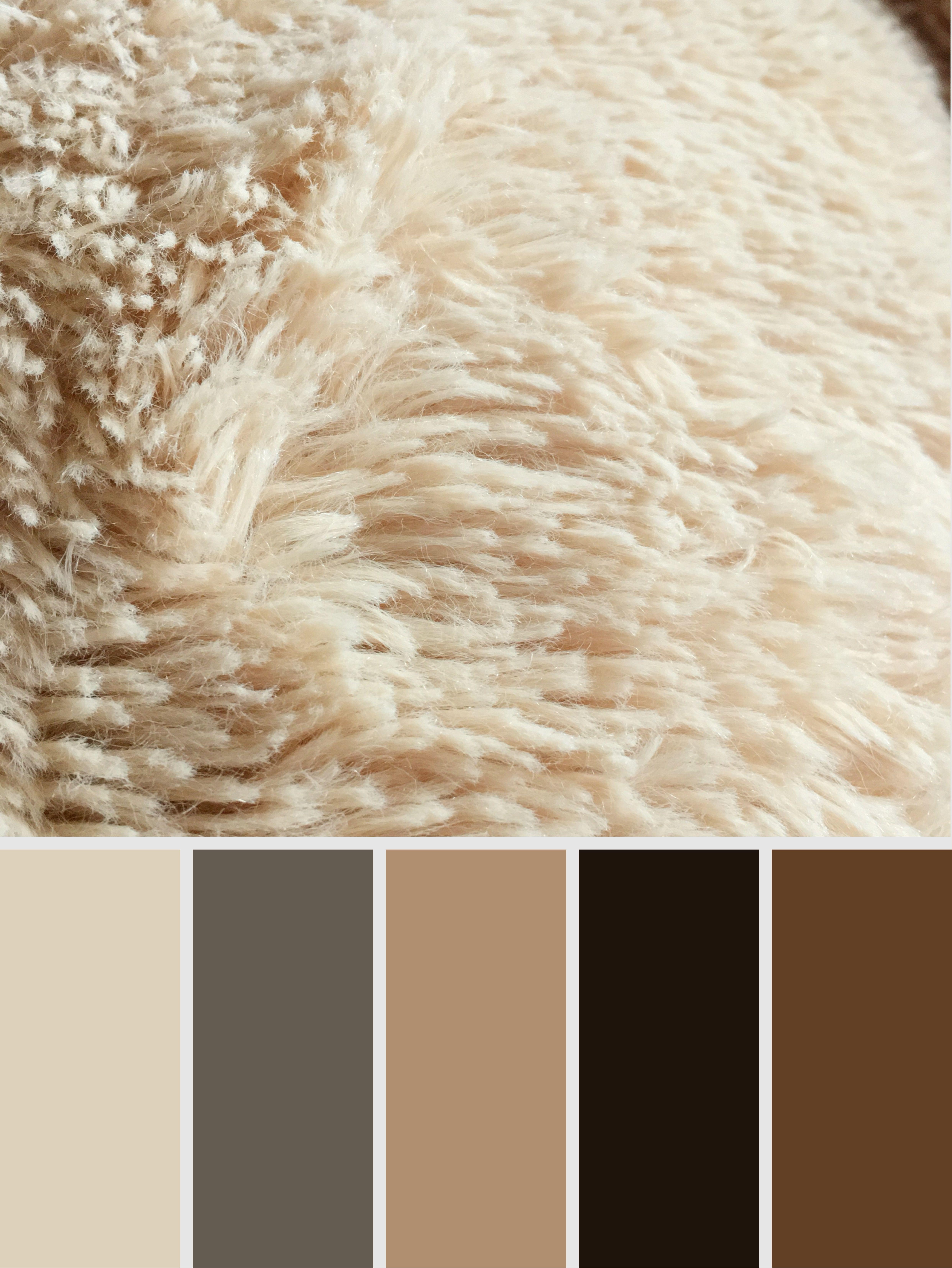Soft Chocolate Color Palette Colorpalettes Palette Brown