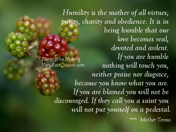 Humility is the mother of all virtues; purity, charity and obedience. It is in being humble that our love becomes real, devoted and ardent. If you are humble nothing will touch you, neither praise nor disgrace, because you know what you are. If you are blamed you will not be discouraged. If they call you a saint you will not put yourself on a pedestal.― Mother Teresa Quotes