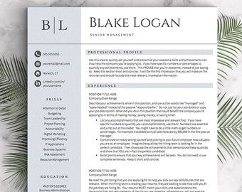 Professional Resume Template For Word And Pages Us Letter And A
