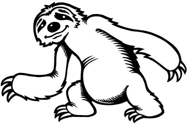 Sloth, Cute Little Sloth Coloring Page: Cute Little Sloth Coloring ...
