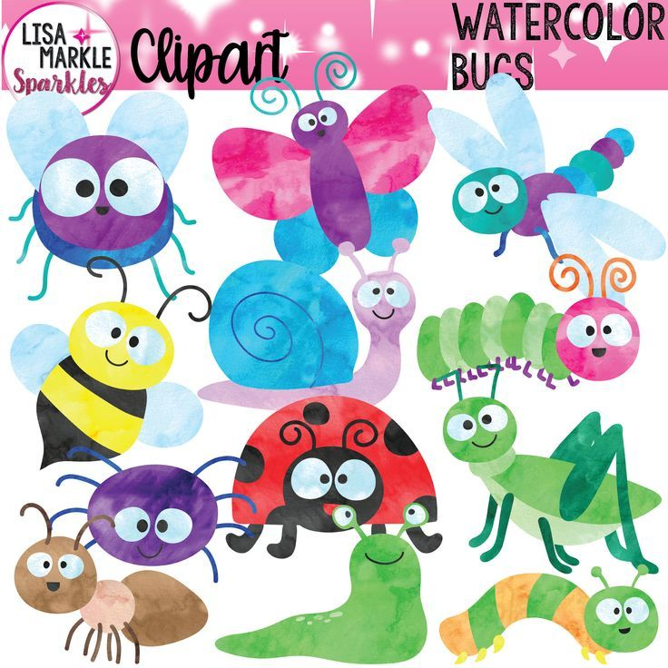 Bug Clipart, Watercolor Bug Clipart, Spring Clipart ...