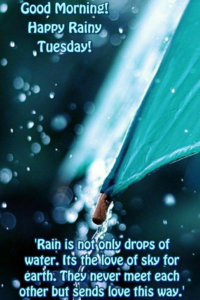 Rainy Tuesday : rainy, tuesday, Morninng, Hapoy, Rainy, Tuesday, Drops, Water., Earth., Never…, Quotes,, Sunday, Morning, Wishes
