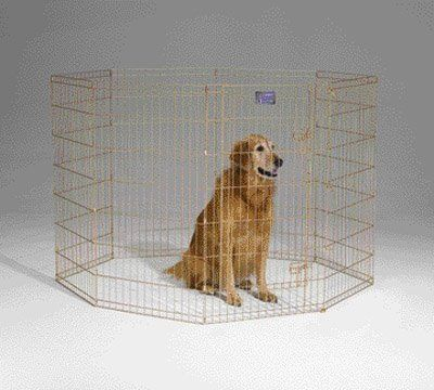 61 94 99 99 The Midwest Homes For Pets Exercise Pen Is Made Of Acri Lock Acrylic Coated Gold Zinc For Long Lasting Prot Dog Playpen Dog Pen Indoor Dog Fence