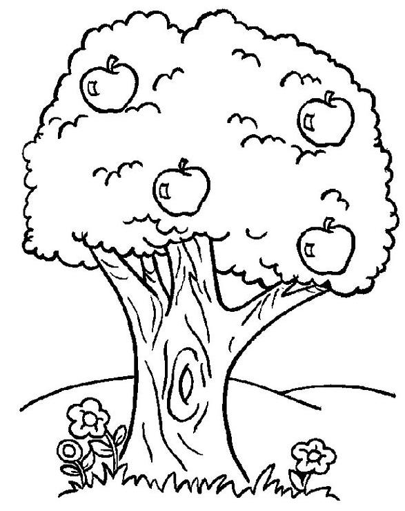 Dibujo para colorear Árbol Páginas para colorear | Árboles | Pinterest
