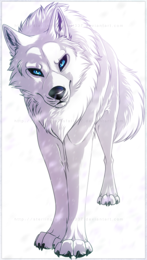 The White Demons S Main Fur Color Is White Description From Warriorcatsrpg Com I Searched For This On Bin Anime Wolf Drawing Cartoon Wolf Wolf With Blue Eyes