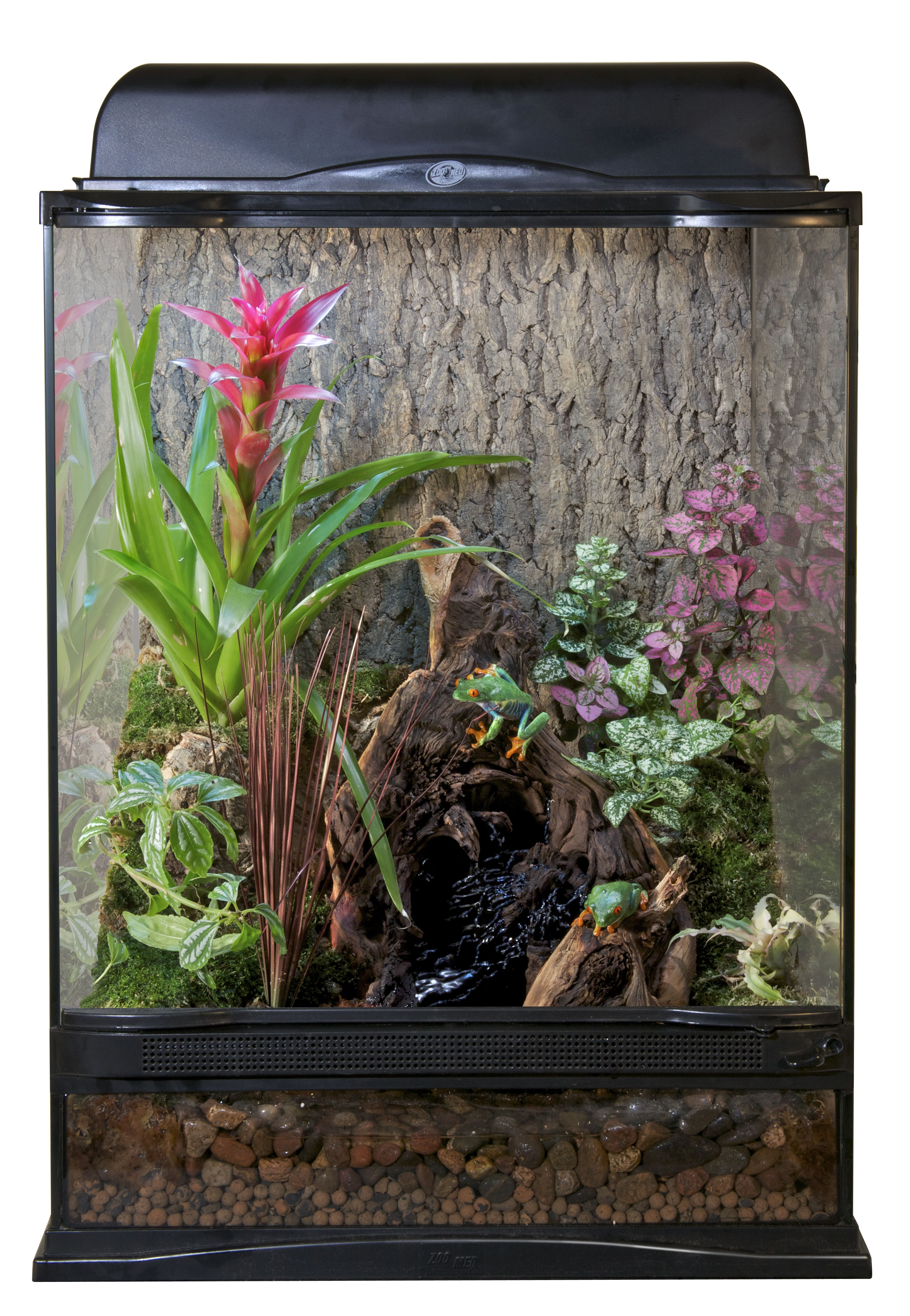 12x12x18 Zoo Med Terrarium Setup For Red Eyed Tree Frogs Diy This