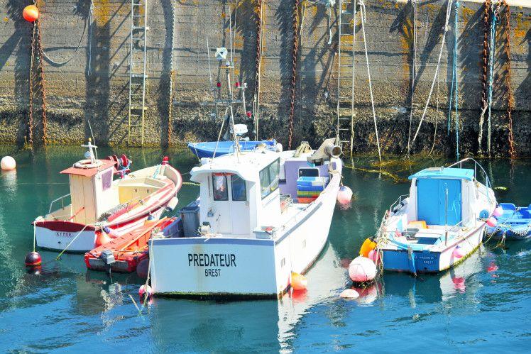 Île d'Ouessant - Port du Stiff, le Prédateur de Brest. Finistère, Bretagne, France. (c) Marie Bambelle. Aucune utilisation sans mon accord préalable et sans mention.
