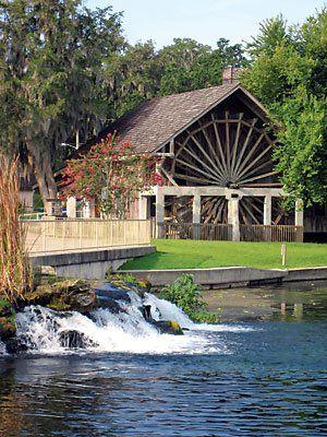 Best Restaurants Near University Of Central Florida