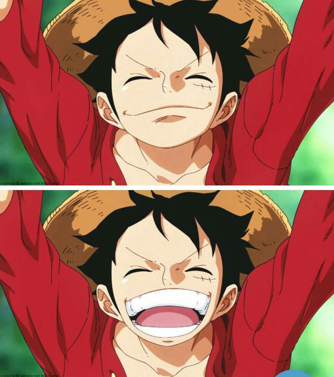 One Piece Monkey D Luffy I Don T Know Why But I Love This