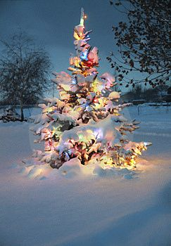 Christmas Tree In Snow Pictures And Free Clip Art Printables Freeprintables Snow Covered Christmas Trees Outdoor Christmas Christmas Love