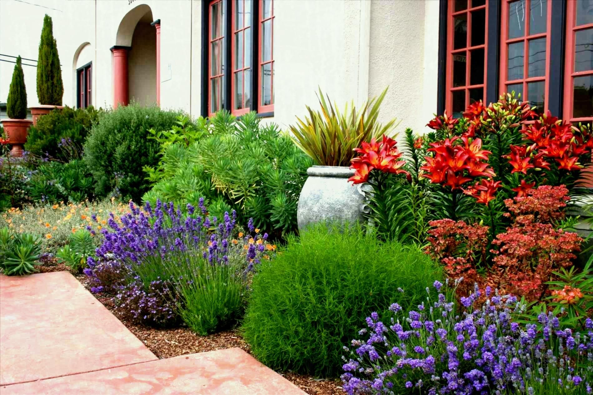 12 Some Of The Coolest Initiatives Of How To Makeover Backyard Landscape Ideas Mediterranean Garden Design Mediterranean Landscape Design Mediterranean Landscaping Backyard garden how to plant