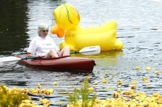 Duck Wrangler and ACUW Board member Pat Fogarty urges ducks toward the finish line. PHOTO PROVIDED