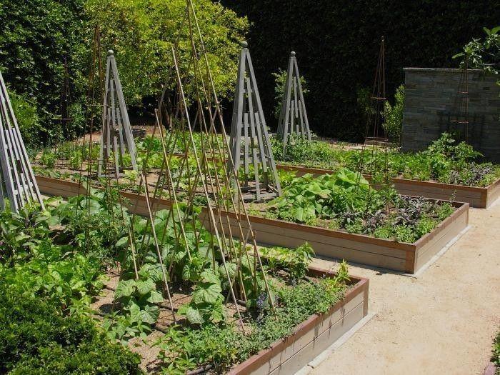 700_700-art-luna-kitchen-garden-trellis-gardenista | garden