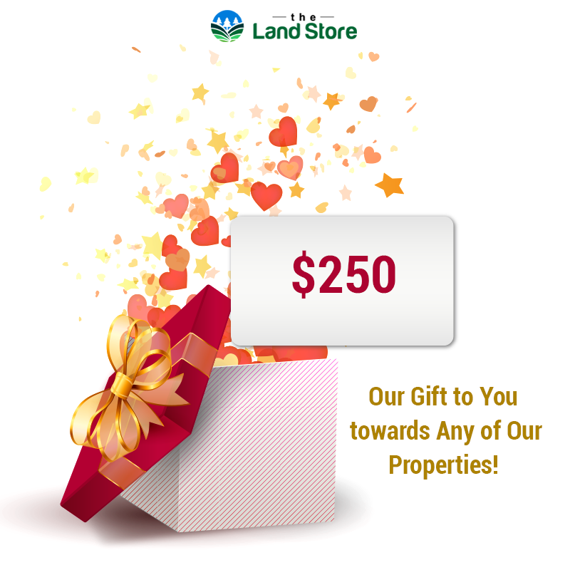 Today's Special Offer! Redeem our #Free Gift Coupon for every