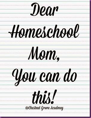 Dear Homeschool Mom Letter and Bless a Mom