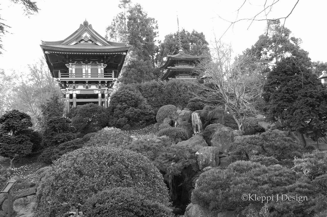 Beautiful japanese tea garden in san fransisco ca tea