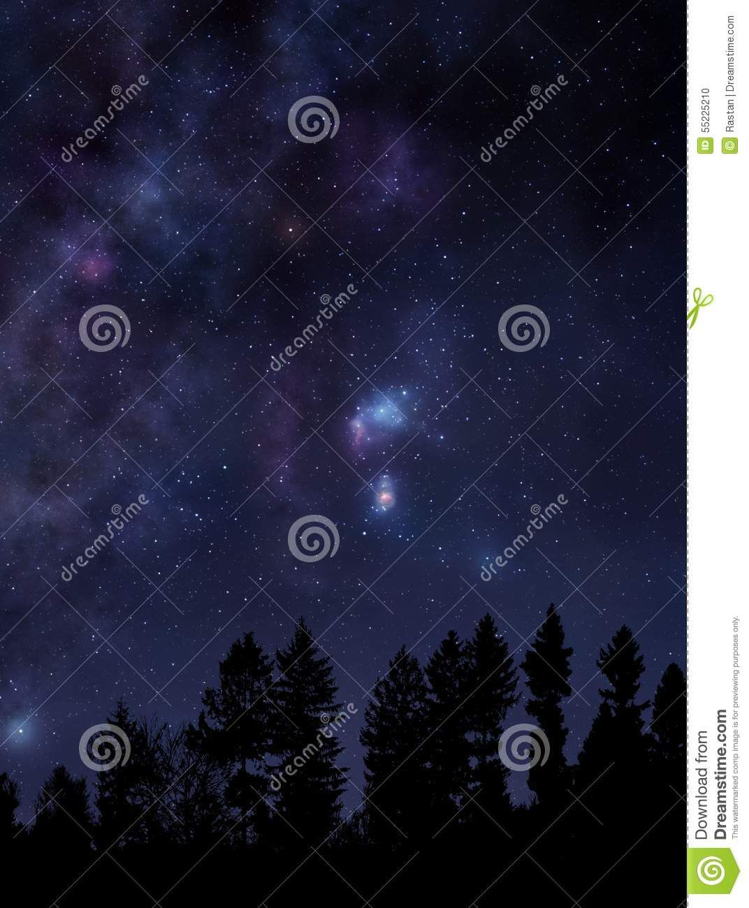 Starry Night Sky Over The Forest Stock Photo Image Of Dreamy Galactic 55225210 Red Peonies Flower Frame Png Purple Peonies