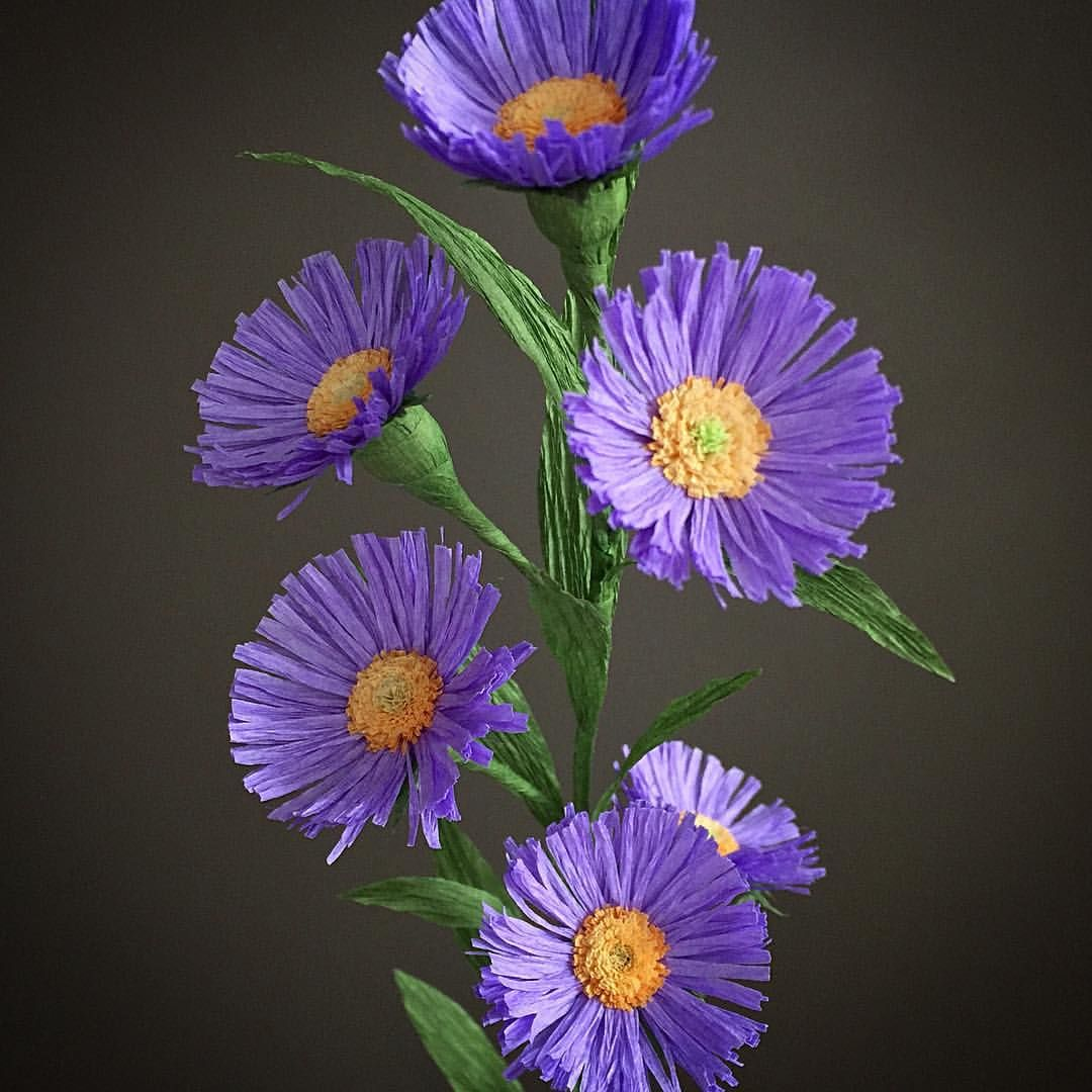 Crepe paper asters 27