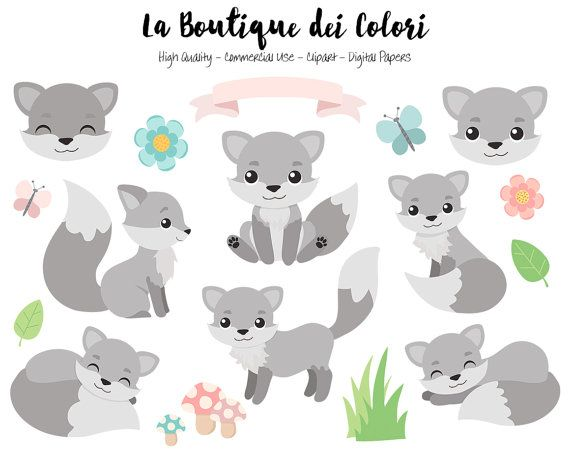 Gray fox clipart cute digital graphics png by laboutiquedeicolori