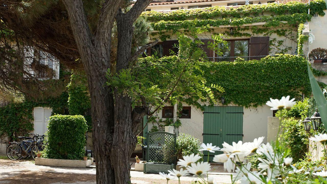 Studio Proche Plage Presquile Giens Ile De Porquerolles Porquerolles Et Provence Alpes Cote D Azur