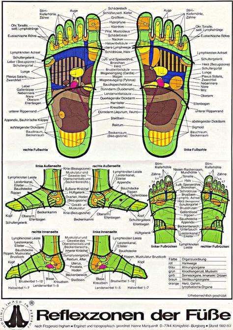 fussreflexzonen karte Fußreflexzonenmassage: Karte der Reflexzonen | Health