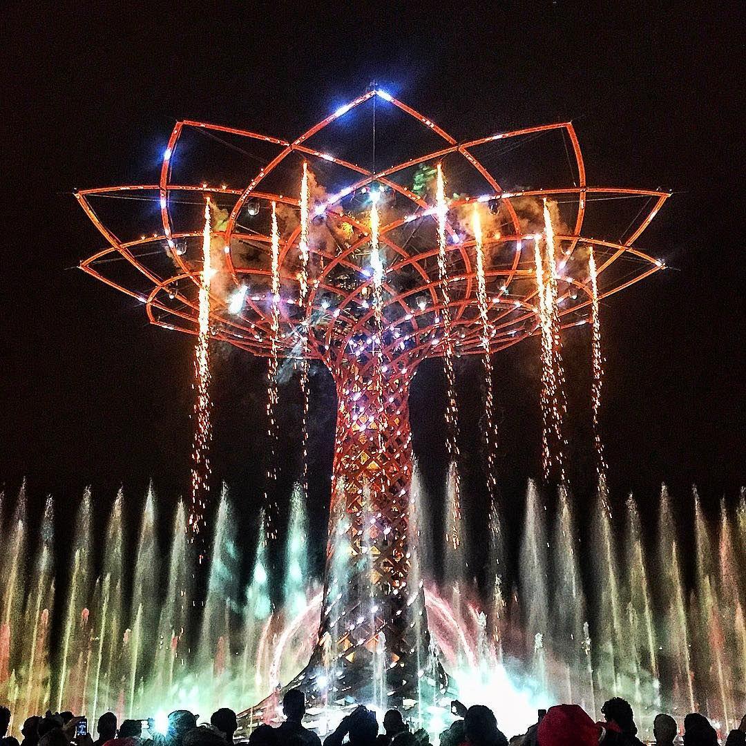 Life.  #italia #italy #milano #milan #milanocity #milanocityufficiale #milanodavedere #milanobynight #igers #igersoftheday #igersitalia #igerslombardia #igersmilano #expo #expo2015 #expomilano2015 #expo2015milano #albero #alberodellavita #lifetree #vita #life #love #moment #moments #top #fantastic #beautiful #night #fireworks by jaybi_official