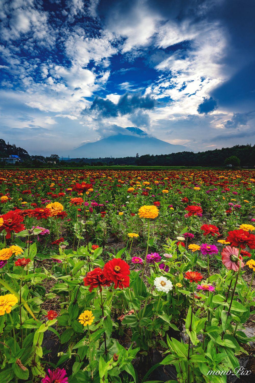 Photo By Monopix Follow Us For Amazing Posts Sony Ilce7rm3 Mtfuji Fujiyama Fujisan Photography Photooftheday Nature Nature 美しい風景 美しい場所 富士山 絶景