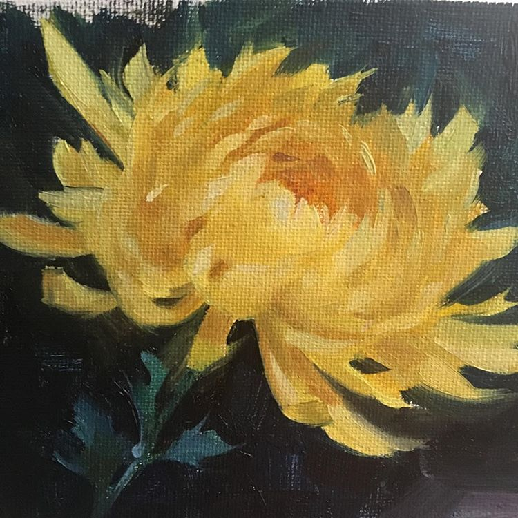 Miniature Still Life Floral Oil Painting Yellow Chrysanthemum Study For Fall One Of My Favorite Flowers But So Floral Oil Paintings Painting Flower Art