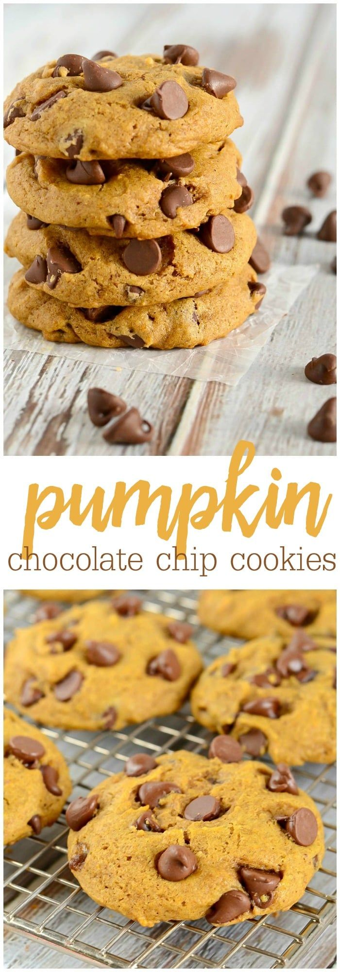 These Pumpkin Chocolate Chip Cookies are SO Simple soft and fluffy theyre almost like a cake Filled with pumpkin flavor seasonal spices and chocolate chips these cookies...
