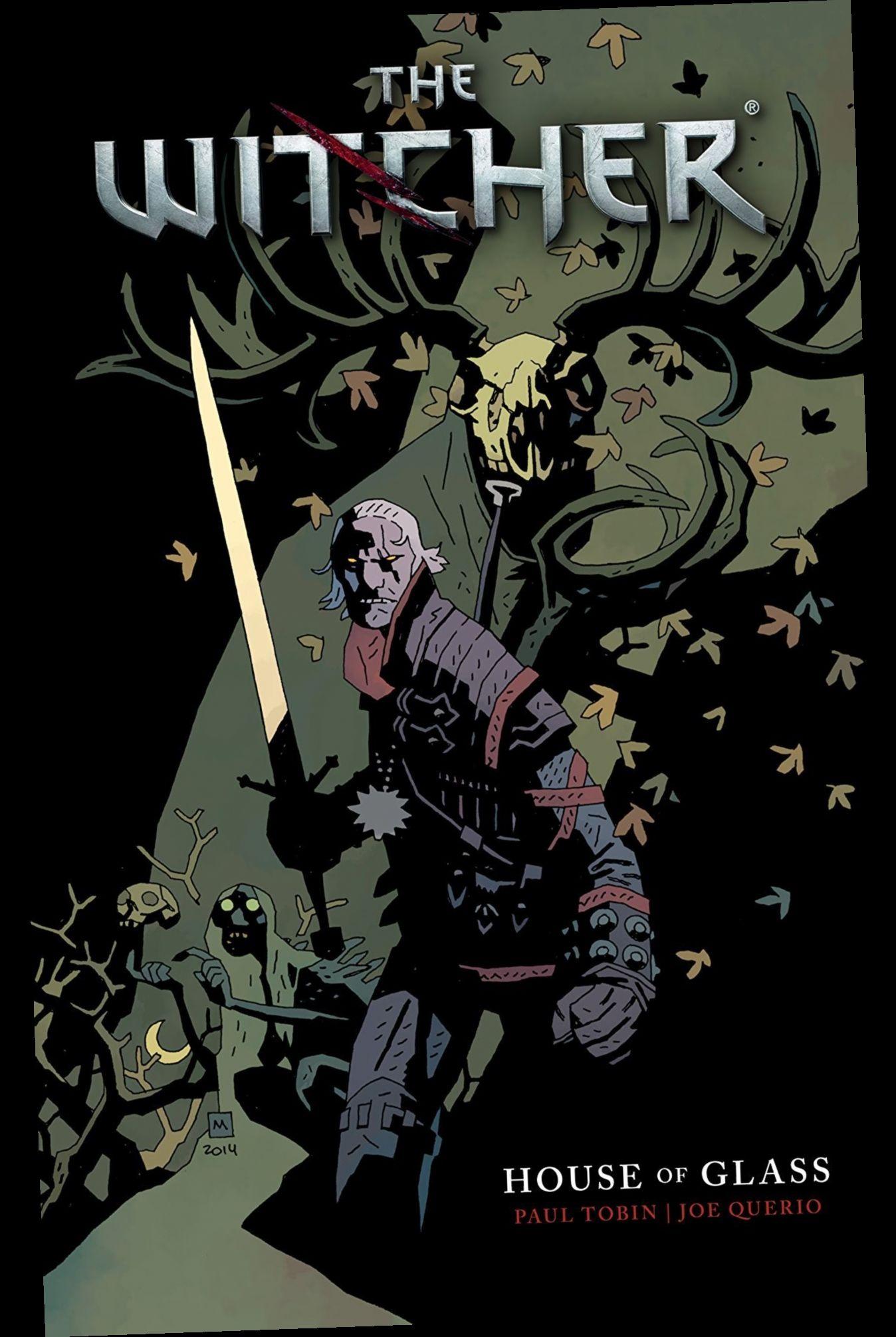 Ebook Pdf Epub Download The Witcher Vol 1 House Of Glass By Paul Tobin Komiksy Artbuki
