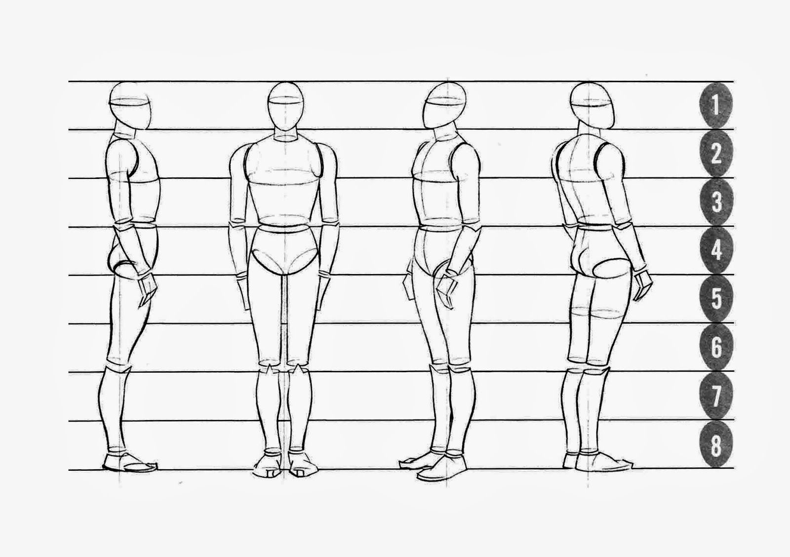 Image Result For Proportion Figure Drawing