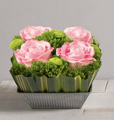 ouate rose timbale de 4 roses rouges gros boutons dans un crin carr de fleurs et feuillages. Black Bedroom Furniture Sets. Home Design Ideas