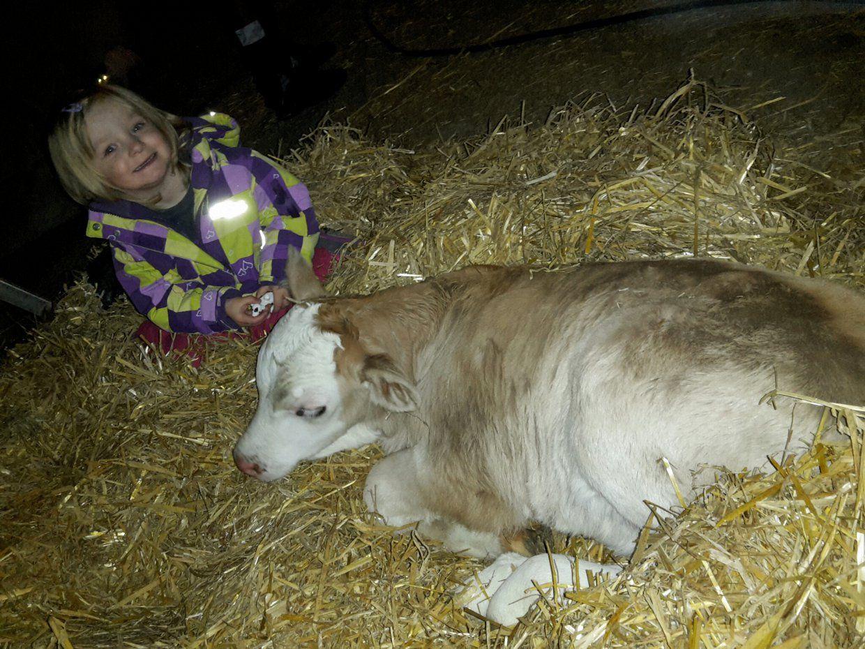 und eine kleine Kuh wie du es bist.