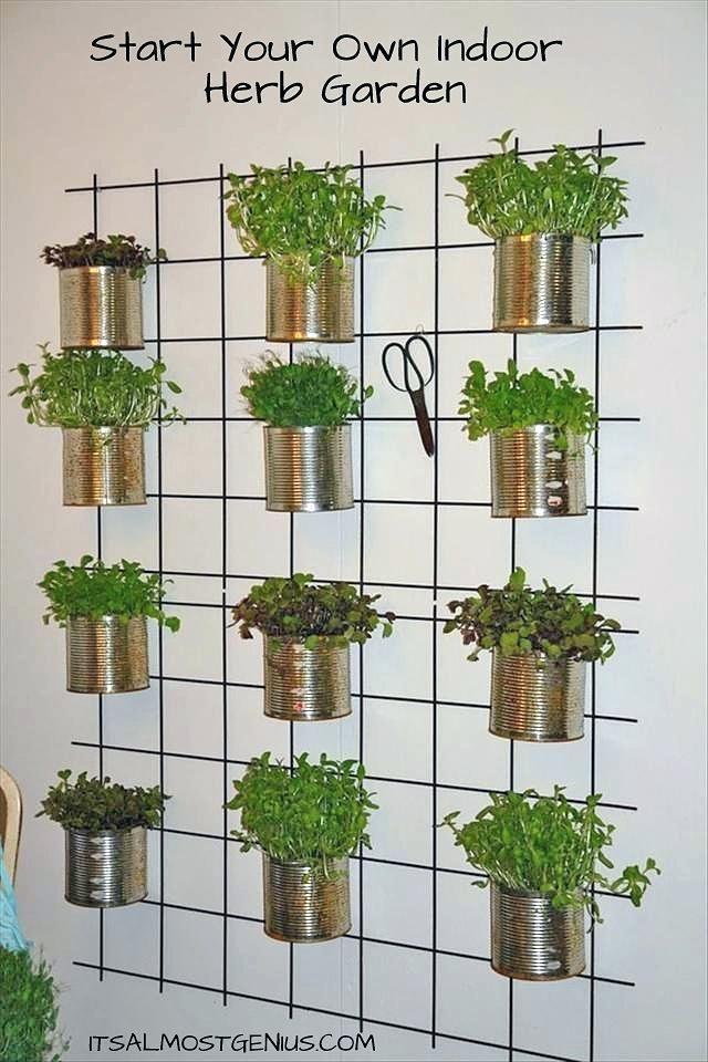 diy indoor vertical vegetable garden indoor wall herb on indoor herb garden diy wall kitchens id=76712