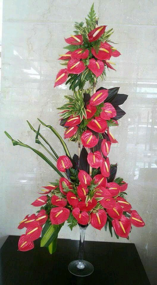 Anthuriums In Bloom Tropical Flower Arrangements Tropical Floral Arrangements Flower Arrangements Simple
