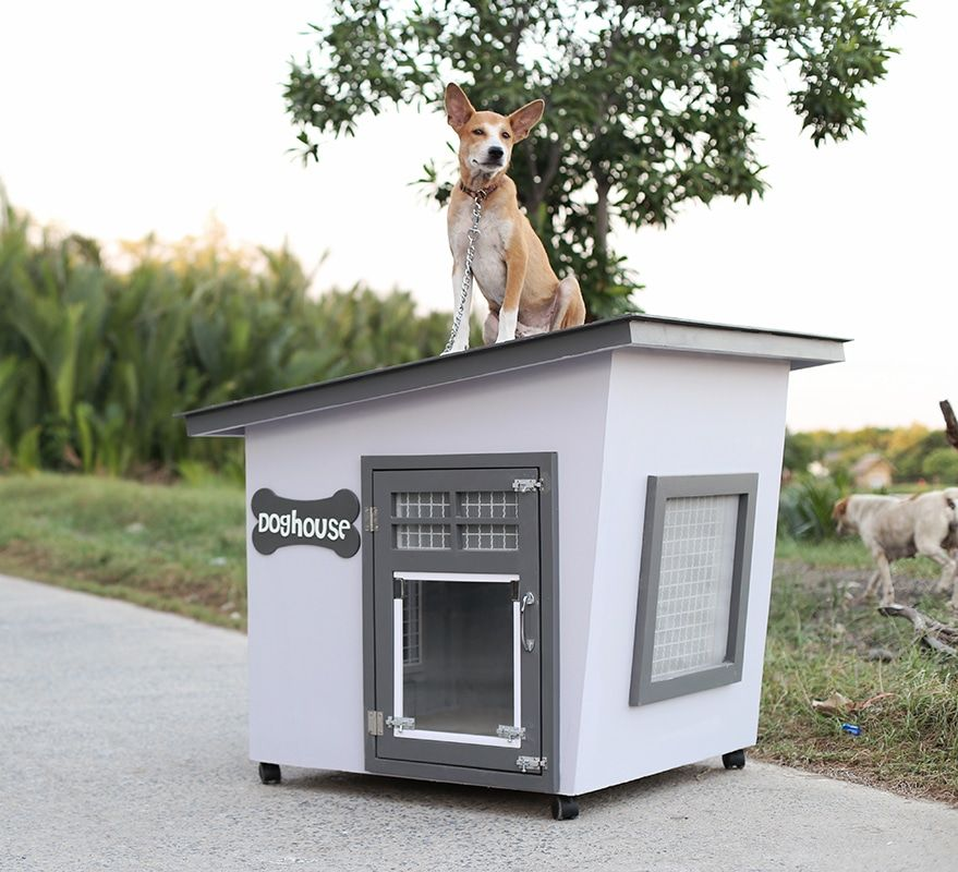 บ านหมา Eco 8 900 ในป 2021 บ านหมา บ านส น ข ส น ข