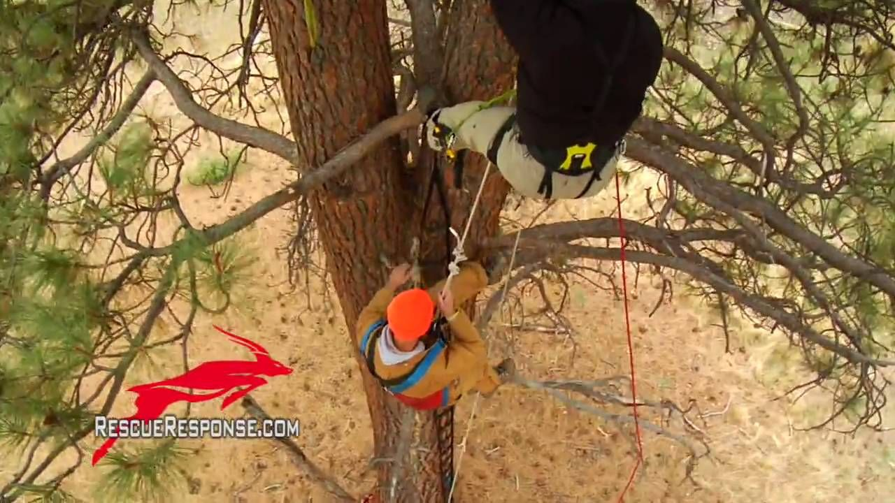 Tree Climber Rescue Vertical Single Rope Pickoff