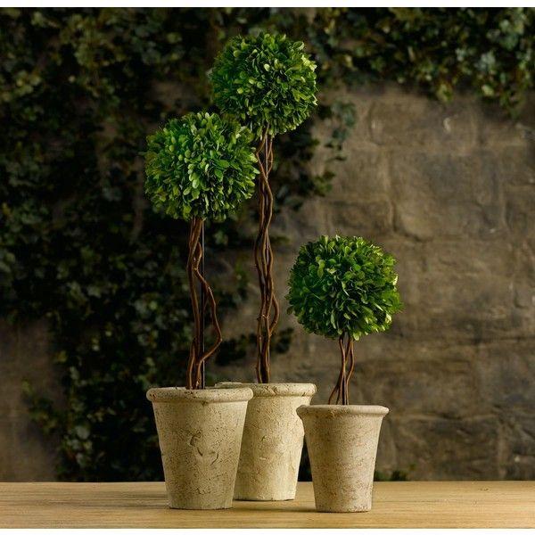 Preserved Boxwood Tree Topiaries ($45) via Polyvore